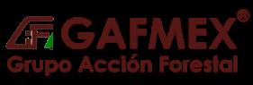 GAFMEX